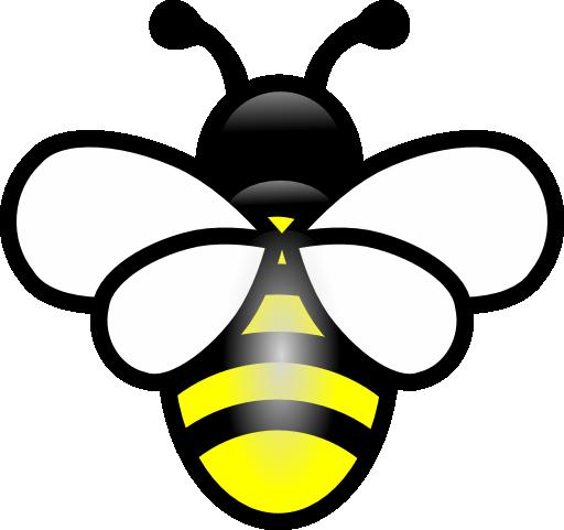 Educazione ambientale la fattoria degli animali ladispoli - Bumble bee pictures a colori ...